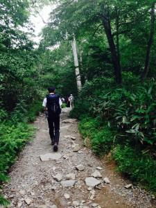 尾瀬 木道までの山道