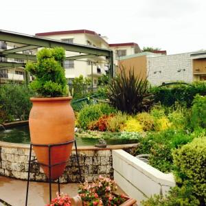プロトリーフ屋上庭園2