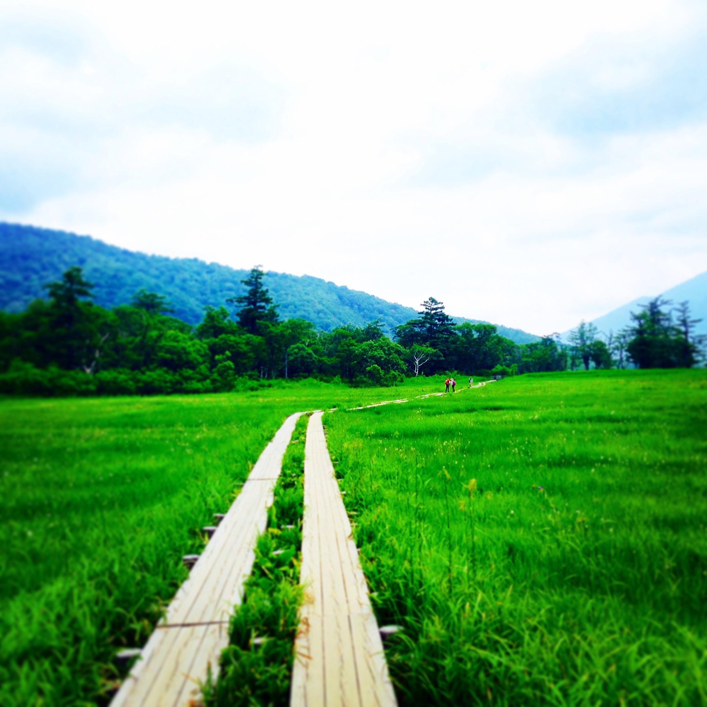 尾瀬日帰りハイキング 木道