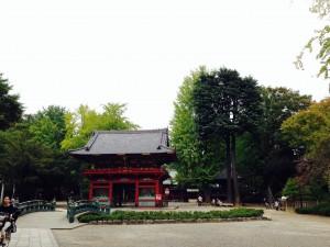 東京散歩 根津神社