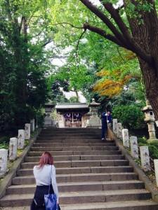 駒込稲荷 根津神社
